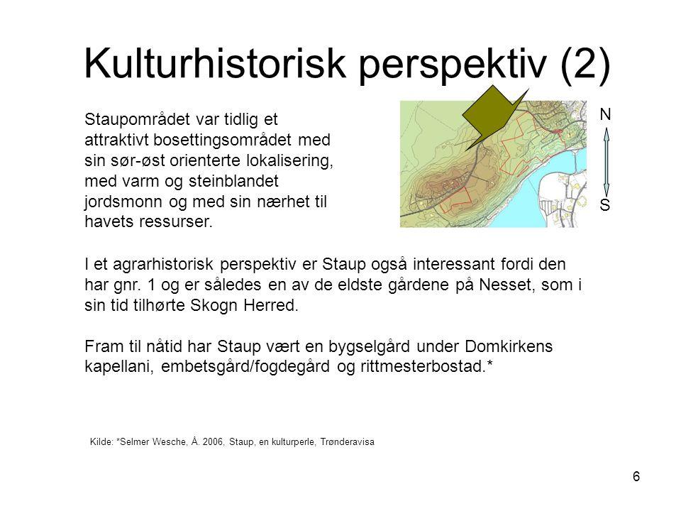 Kulturhistorisk perspektiv (2)