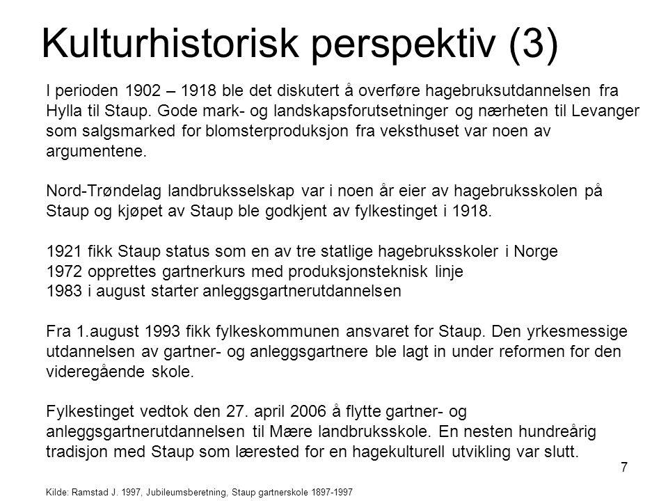 Kulturhistorisk perspektiv (3)