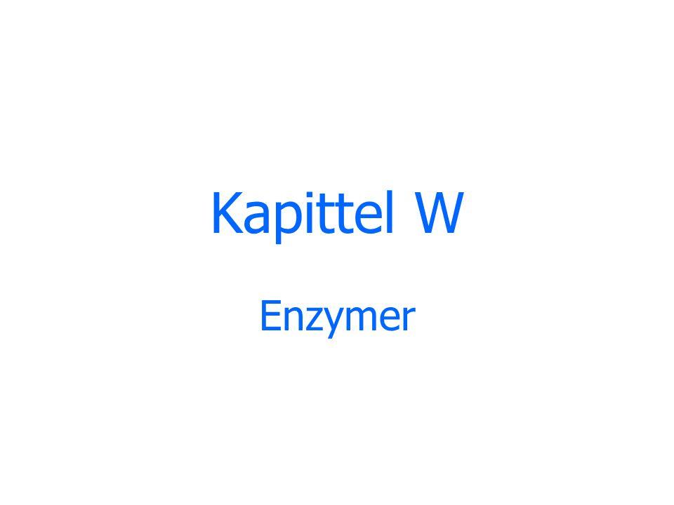 Kapittel W Enzymer
