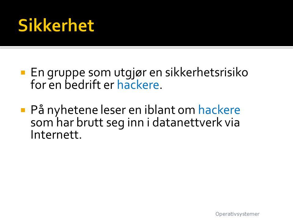 Sikkerhet En gruppe som utgjør en sikkerhetsrisiko for en bedrift er hackere.