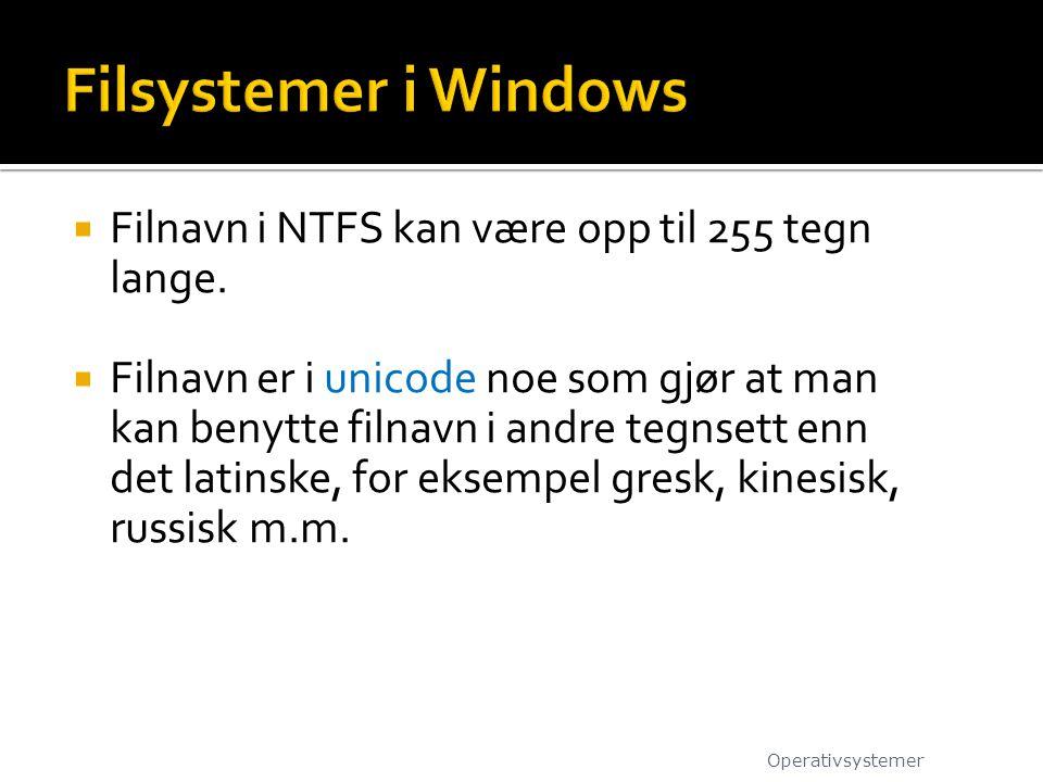 Filsystemer i Windows Filnavn i NTFS kan være opp til 255 tegn lange.