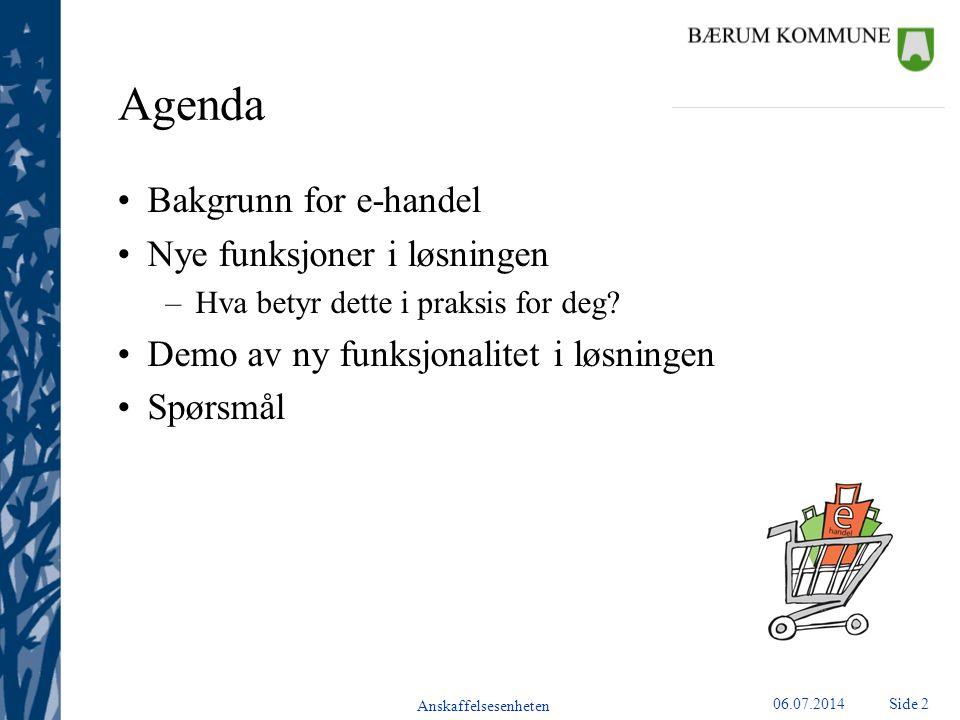 Agenda Bakgrunn for e-handel Nye funksjoner i løsningen