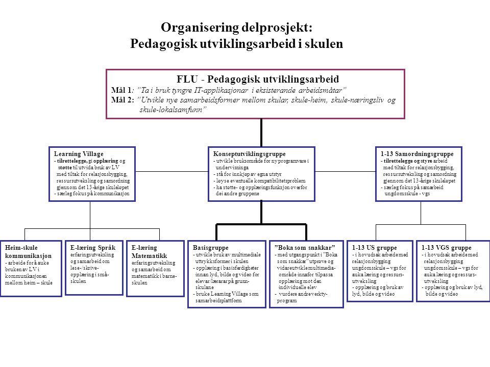 Organisering delprosjekt: Pedagogisk utviklingsarbeid i skulen