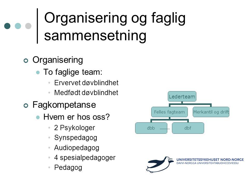 Organisering og faglig sammensetning