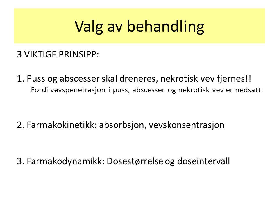 Valg av behandling 3 VIKTIGE PRINSIPP: