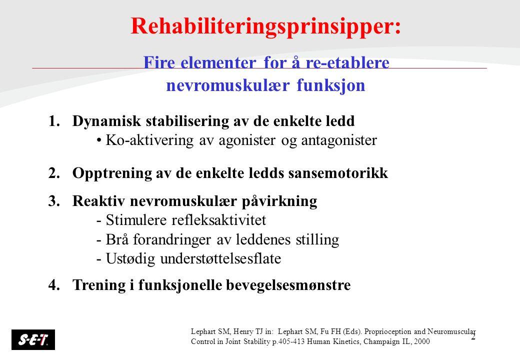 Rehabiliteringsprinsipper: