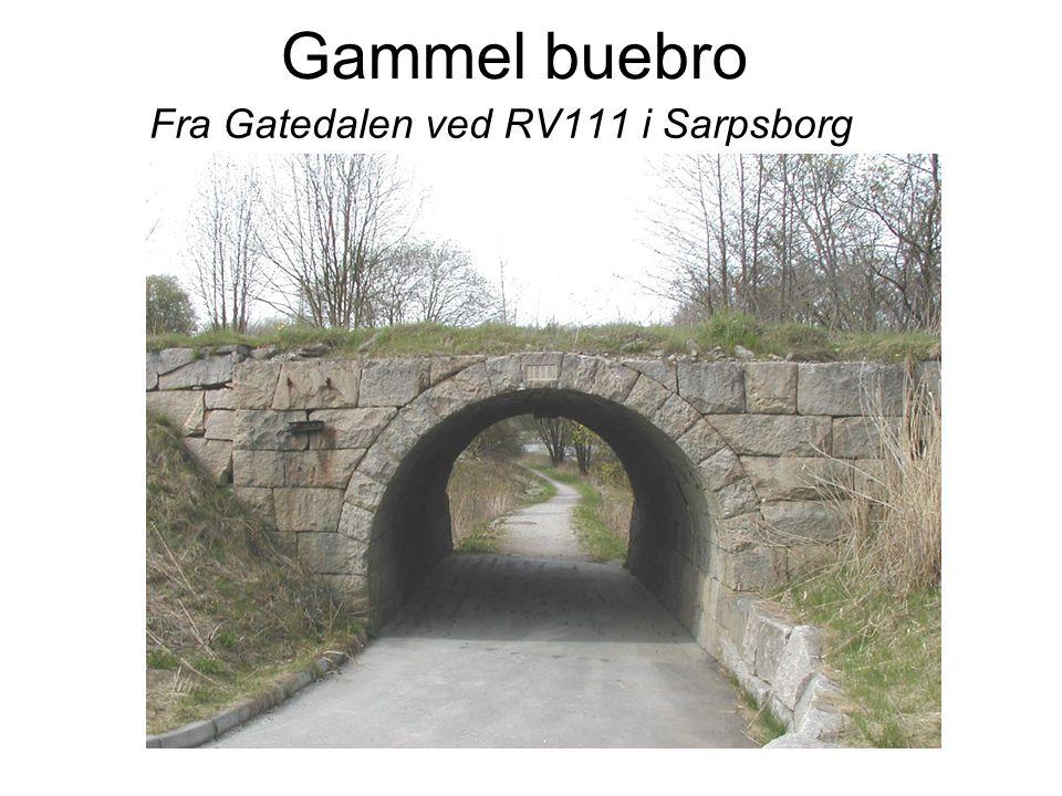 Fra Gatedalen ved RV111 i Sarpsborg