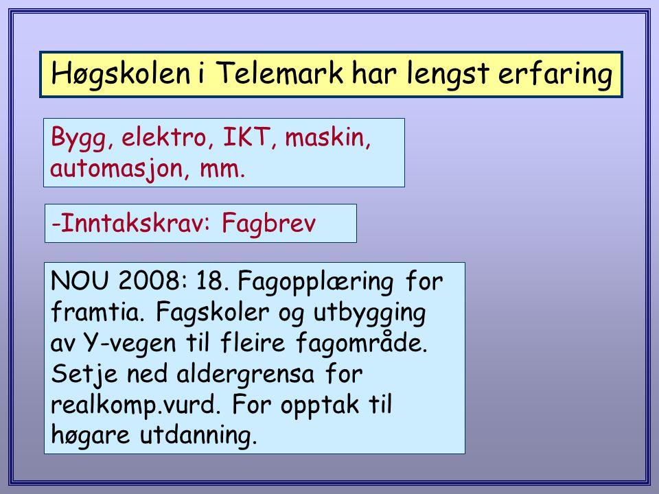 Høgskolen i Telemark har lengst erfaring