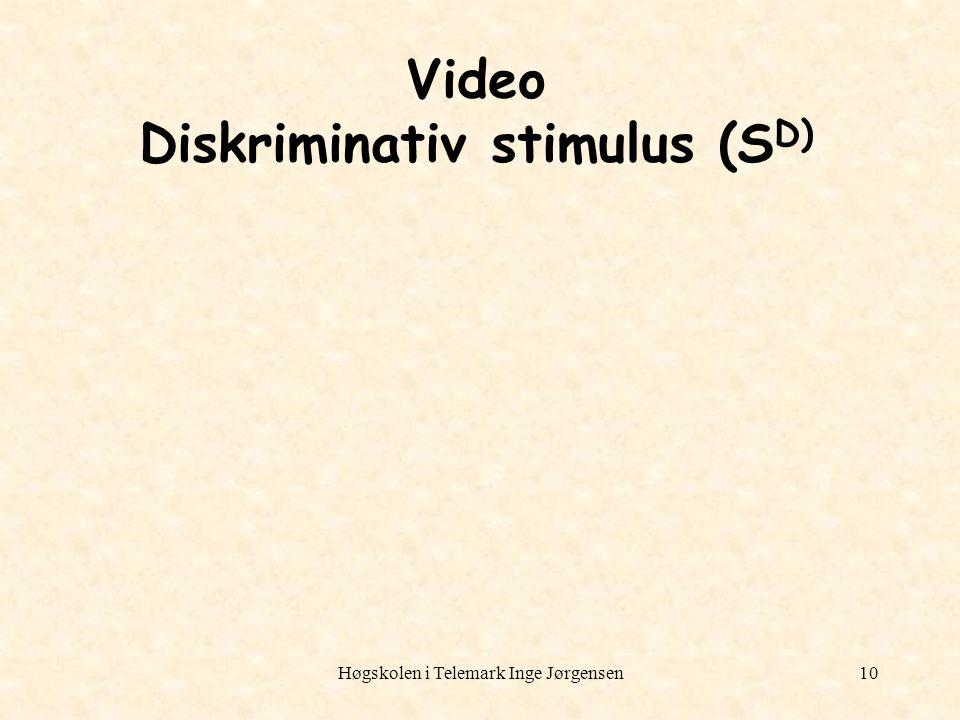 Video Diskriminativ stimulus (SD)