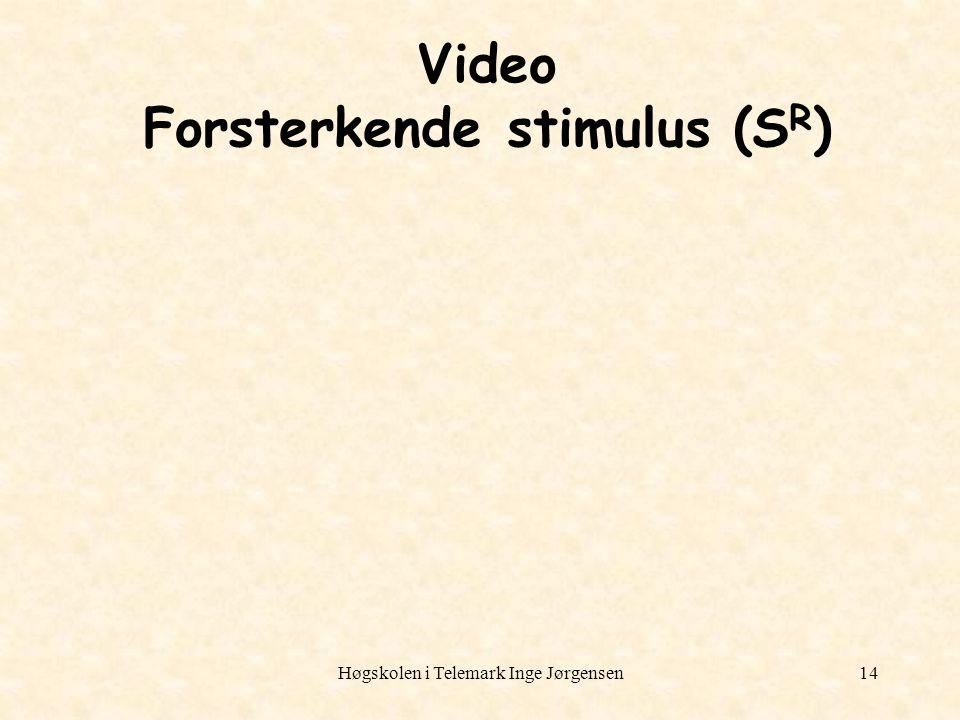 Video Forsterkende stimulus (SR)
