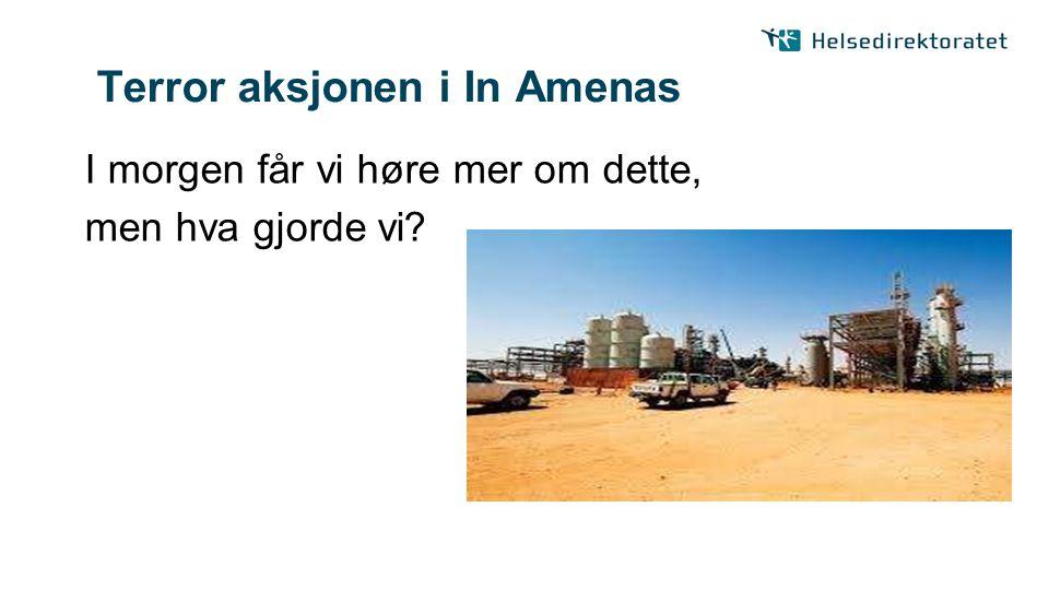 Terror aksjonen i In Amenas