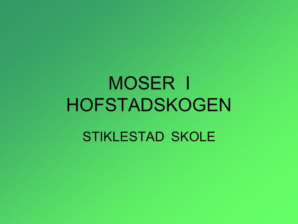 MOSER I HOFSTADSKOGEN STIKLESTAD SKOLE