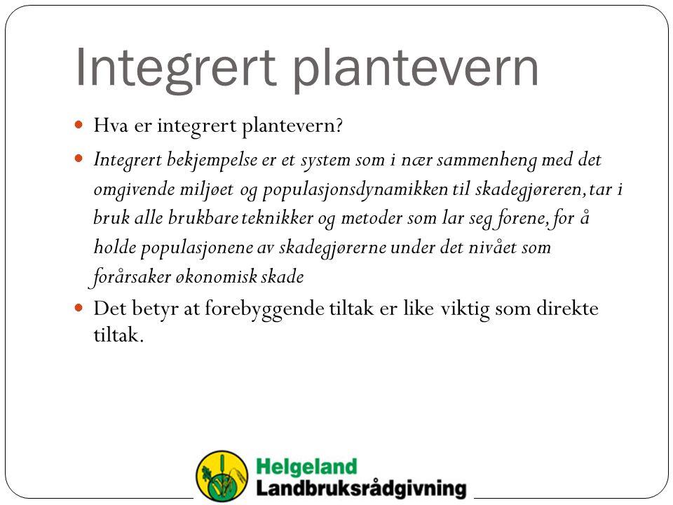 Integrert plantevern Hva er integrert plantevern