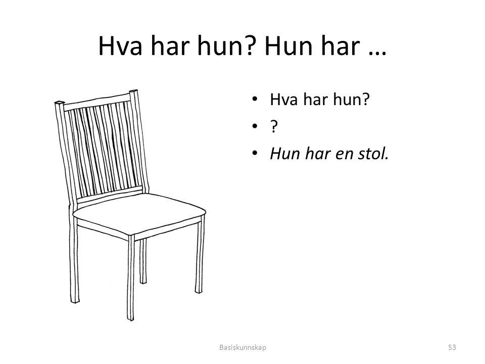 Hva har hun Hun har … Hva har hun Hun har en stol. Basiskunnskap