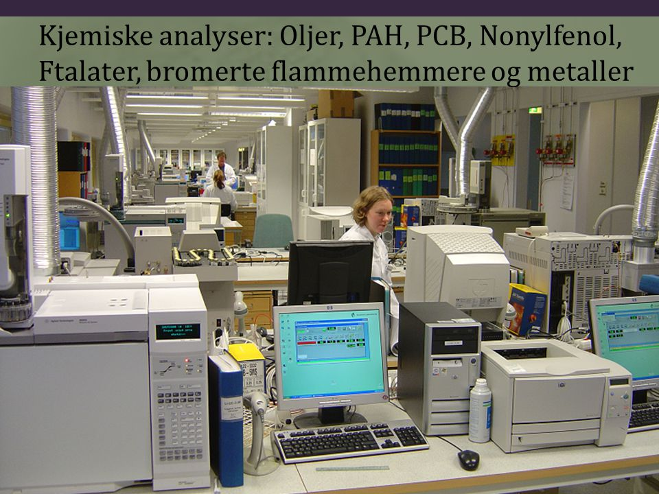 Kjemiske analyser: Oljer, PAH, PCB, Nonylfenol,