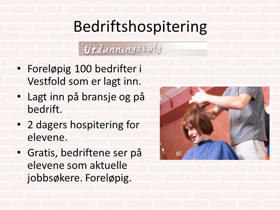 Bedriftshospitering Foreløpig 100 bedrifter i Vestfold som er lagt inn. Lagt inn på bransje og på bedrift.