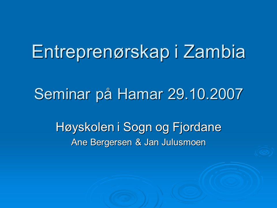 Entreprenørskap i Zambia Seminar på Hamar 29.10.2007