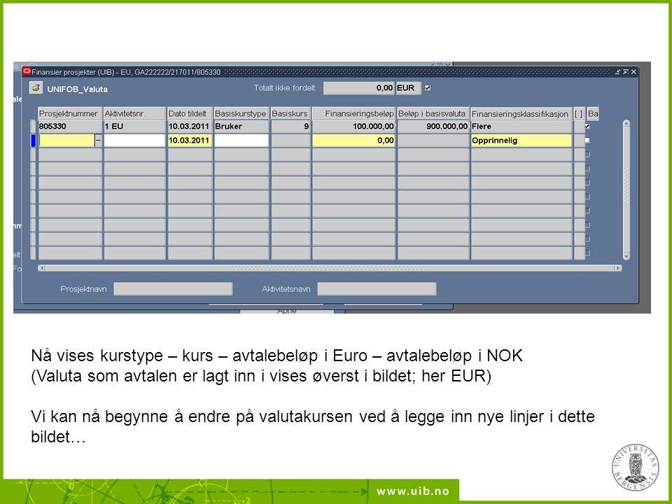 Nå vises kurstype – kurs – avtalebeløp i Euro – avtalebeløp i NOK (Valuta som avtalen er lagt inn i vises øverst i bildet; her EUR)