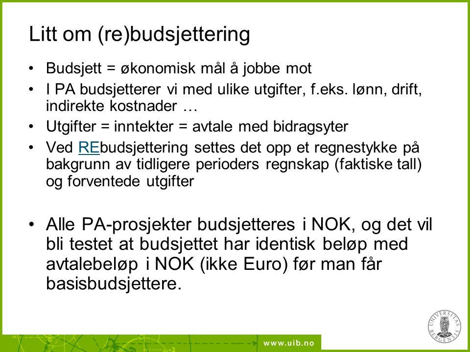 Litt om (re)budsjettering
