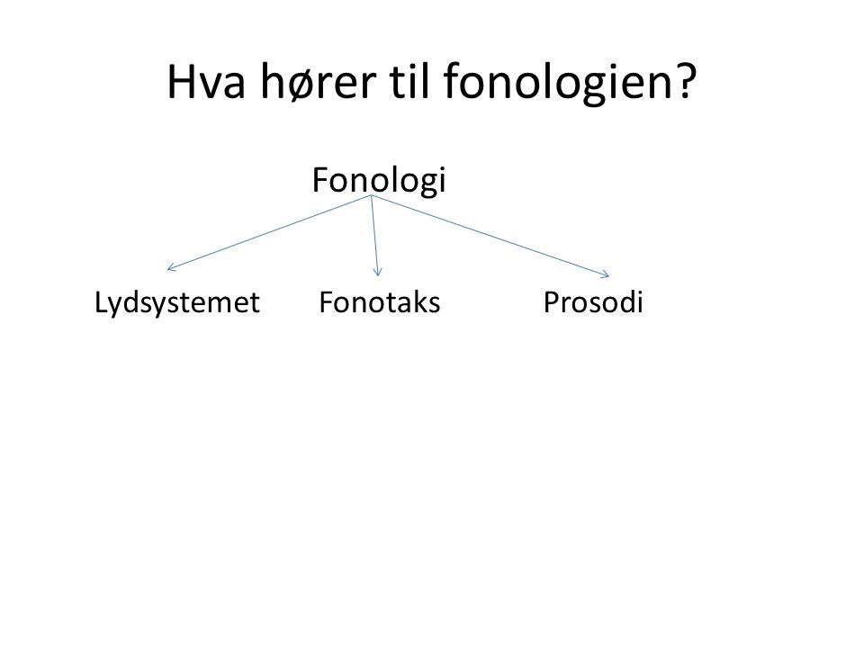 Hva hører til fonologien
