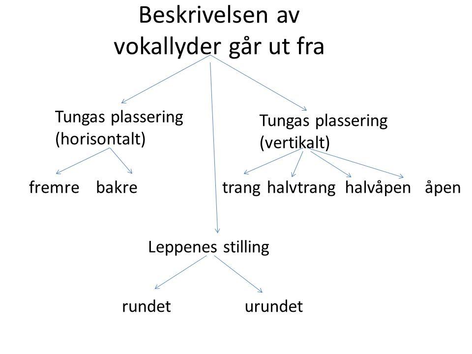Beskrivelsen av vokallyder går ut fra