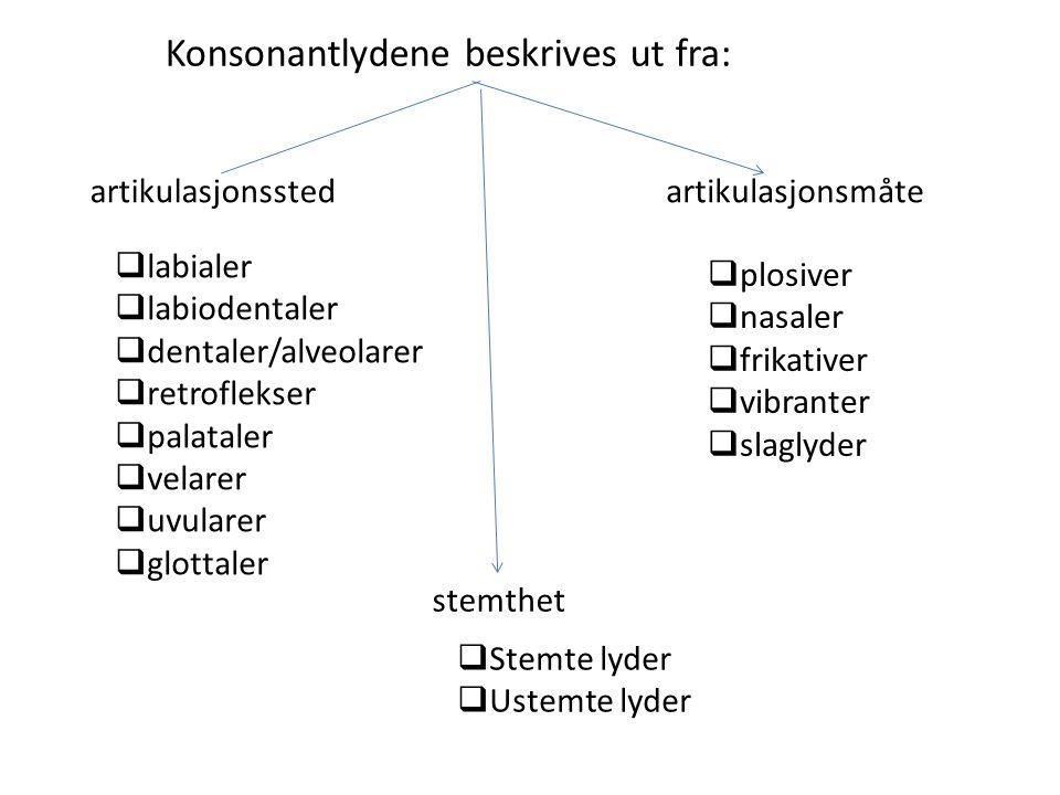 Konsonantlydene beskrives ut fra: