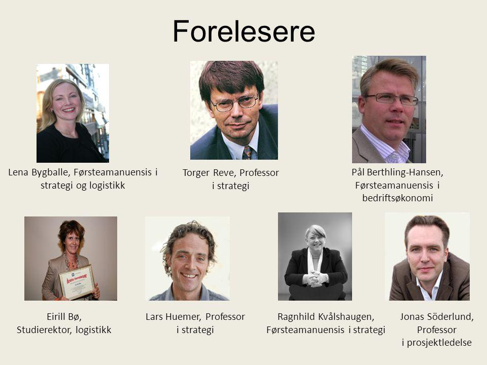 Forelesere Torger Reve, Professor i strategi