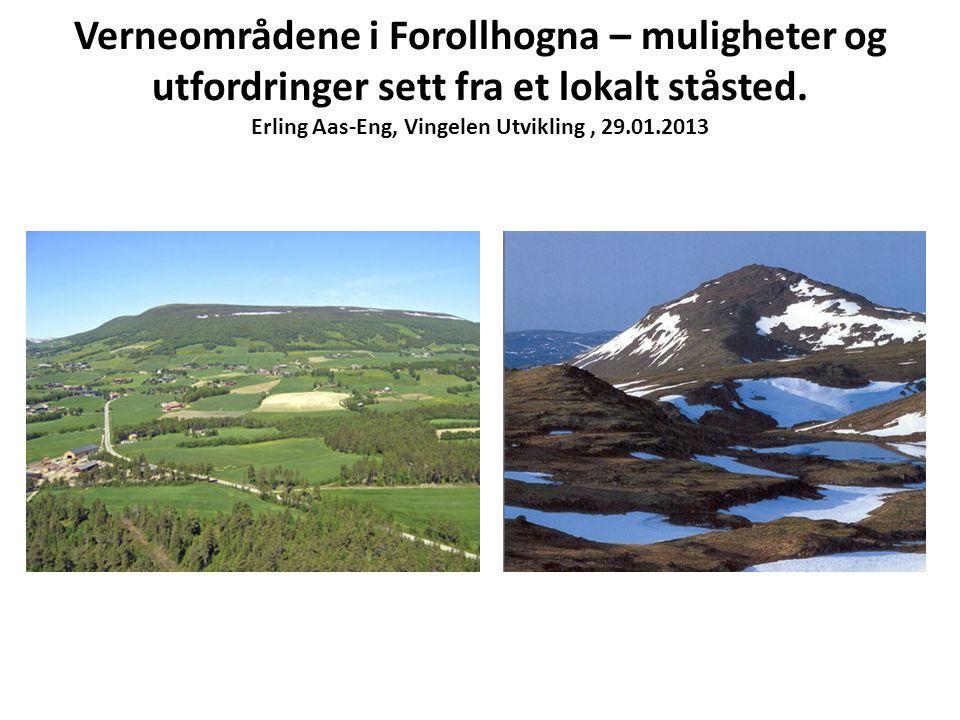 Verneområdene i Forollhogna – muligheter og utfordringer sett fra et lokalt ståsted.