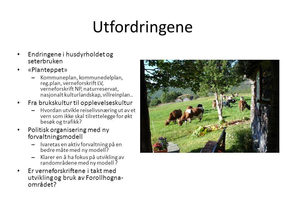 Utfordringene Endringene i husdyrholdet og seterbruken «Planteppet»