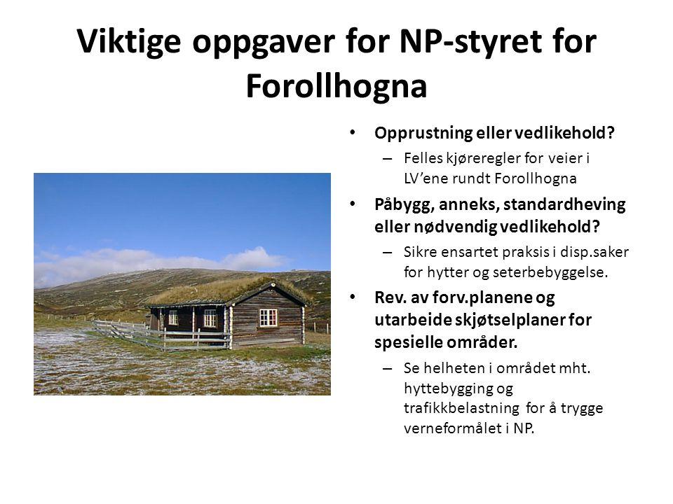 Viktige oppgaver for NP-styret for Forollhogna