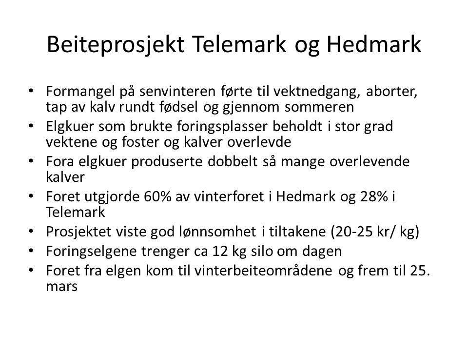 Beiteprosjekt Telemark og Hedmark