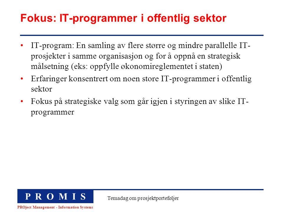 Fokus: IT-programmer i offentlig sektor