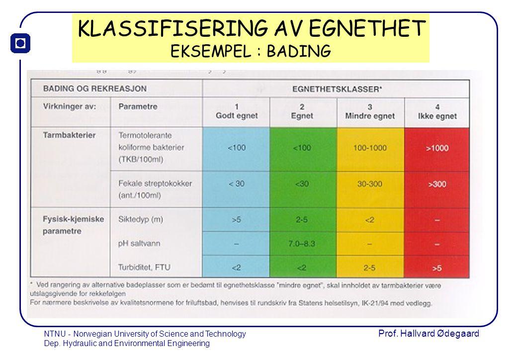 KLASSIFISERING AV EGNETHET