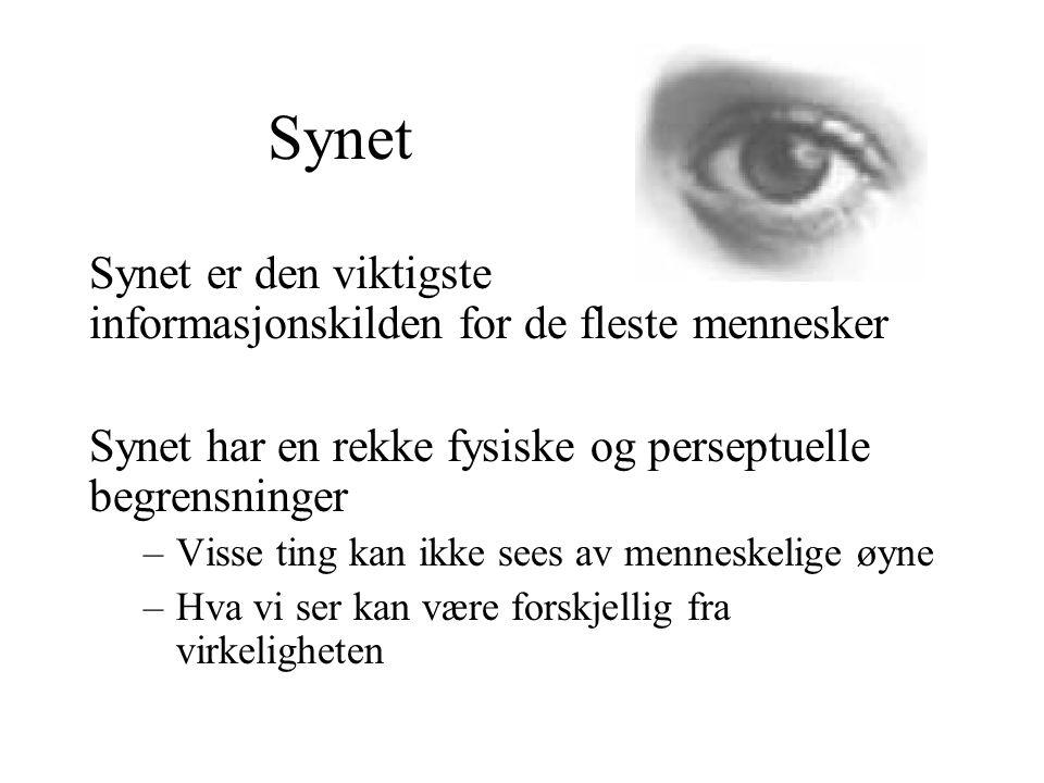 Synet Synet er den viktigste informasjonskilden for de fleste mennesker. Synet har en rekke fysiske og perseptuelle begrensninger.