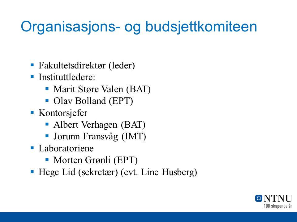 Organisasjons- og budsjettkomiteen