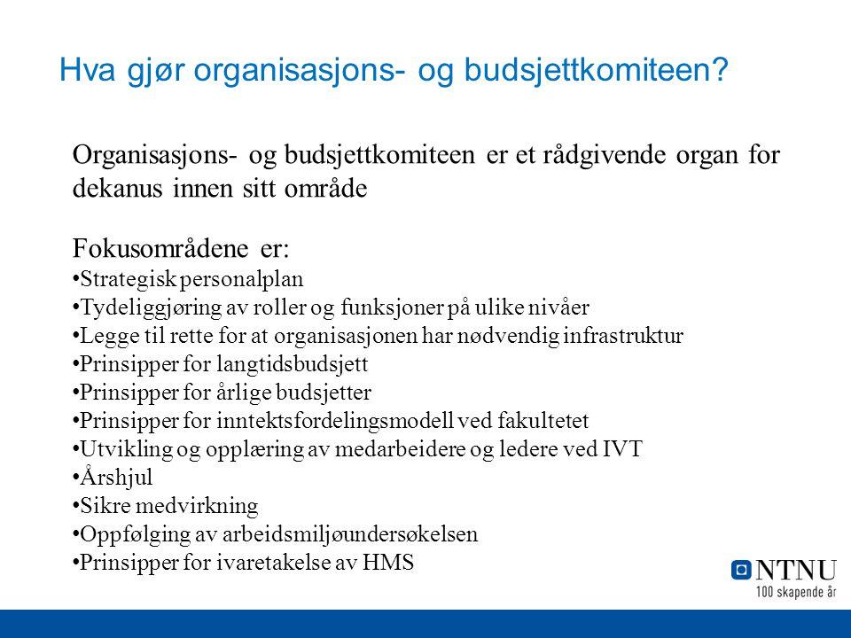 Hva gjør organisasjons- og budsjettkomiteen