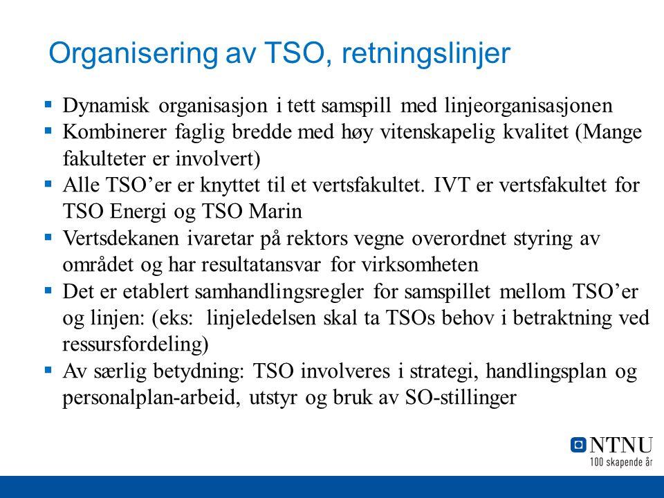 Organisering av TSO, retningslinjer
