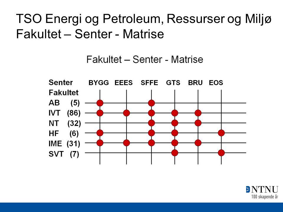 TSO Energi og Petroleum, Ressurser og Miljø Fakultet – Senter - Matrise
