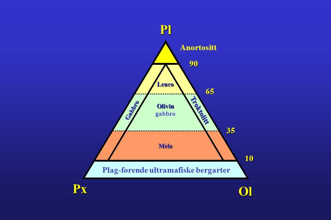Plag-førende ultramafiske bergarter