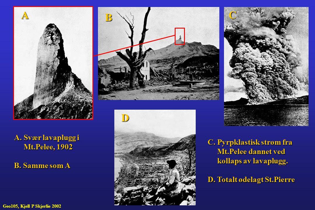 A C B D A. Svær lavaplugg i Mt.Pelee, 1902 B. Samme som A