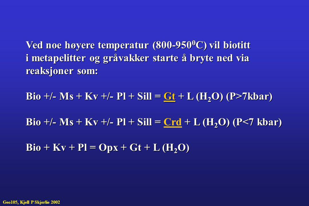 Ved noe høyere temperatur (800-9500C) vil biotitt