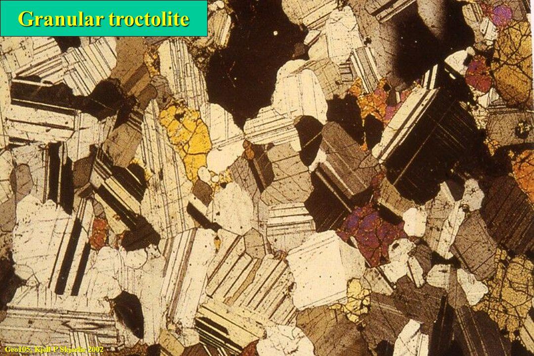 Granular troctolite Geo105, Kjell P Skjerlie 2002