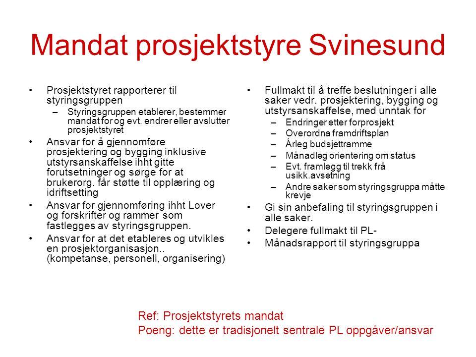 Mandat prosjektstyre Svinesund