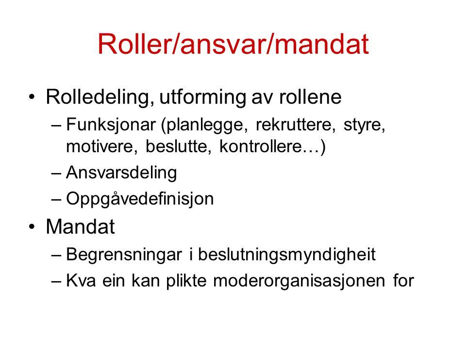 Roller/ansvar/mandat