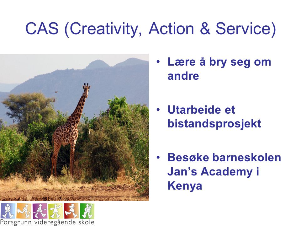 CAS (Creativity, Action & Service)