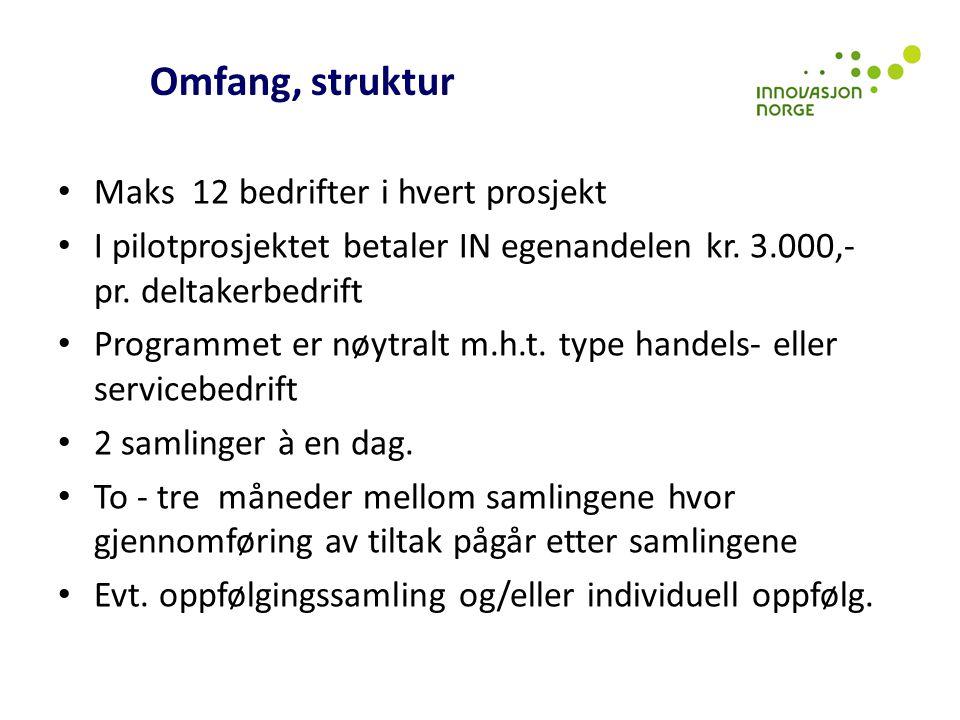 Omfang, struktur Maks 12 bedrifter i hvert prosjekt