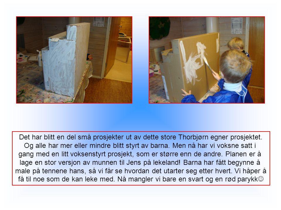 Det har blitt en del små prosjekter ut av dette store Thorbjørn egner prosjektet.