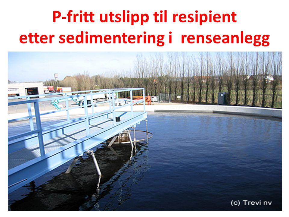 P-fritt utslipp til resipient etter sedimentering i renseanlegg