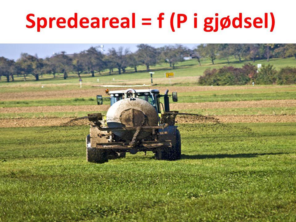 Spredeareal = f (P i gjødsel)