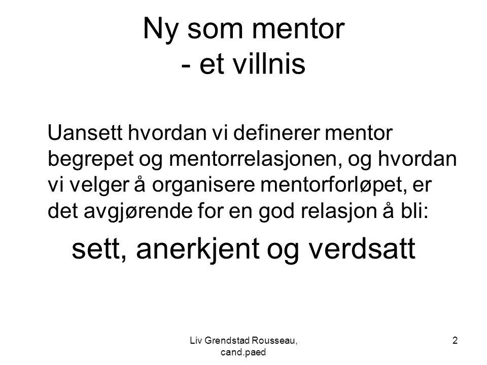 Ny som mentor - et villnis